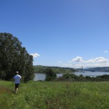 View of the Carquinez Bridge from Mare Island southern trail.